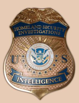 DHS_HSI Intelligenc Badge with fog